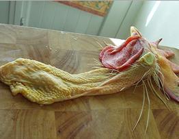 Collo di pollo ripieno