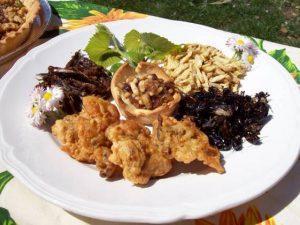 Piatto unico composto interamente da insetti cucinati