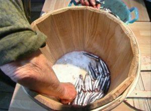 3 alici sistemate nel tezigno a strati con il sale