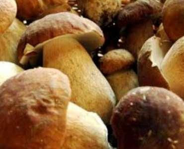 Sagra del Suino nero e del fungo porcino dei Nebrodi (novembre)