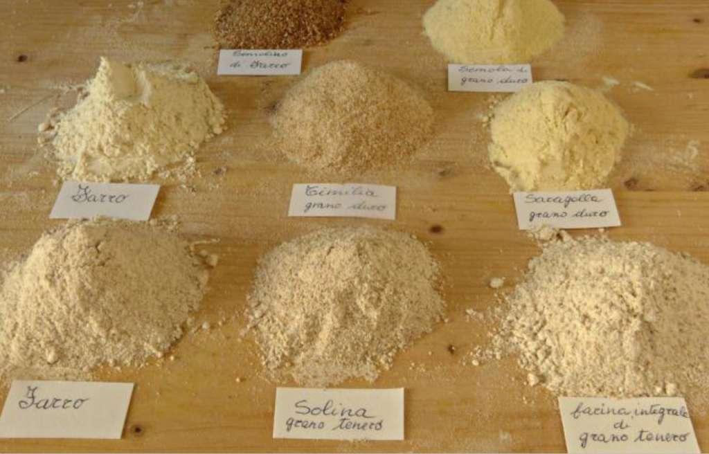 Varietà di grani duri antichi siciliani