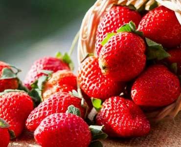 Sagra delle fragole di Maletto (giugno)